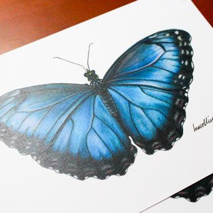 Butterfly drawing A5 print, hand dr..