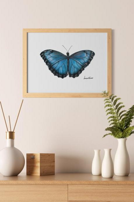 Butterfly drawing A5 print, hand drawn, Blue Morpho butterfly, Art print, Home decor, Gift for her, housewarming gift, Made in Australia